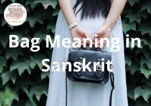 Bag Meaning in Sanskrit | DailyHomeStudy