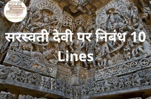 सरस्वती देवी पर निबंध 10 Lines | DailyHomeStudy