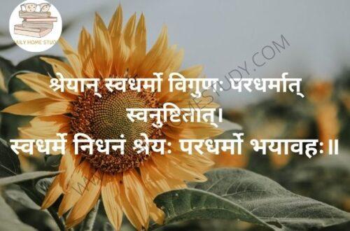 Bhagavad Gita Karma Yoga Shlok Shreyān Svadharmo Meaning in Hindi, English | DailyHomeStudy