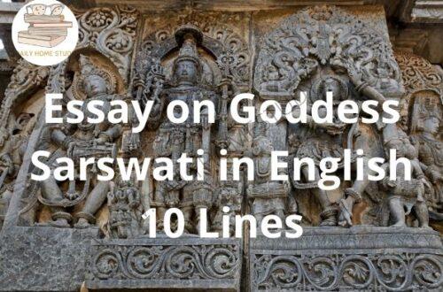Essay on Goddess Sarswati in English 10 Lines | DailyHomeStudy