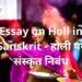 Essay on Holi in Sanskrit - होली पर संस्कृत निबंध | DailyHomeStudy