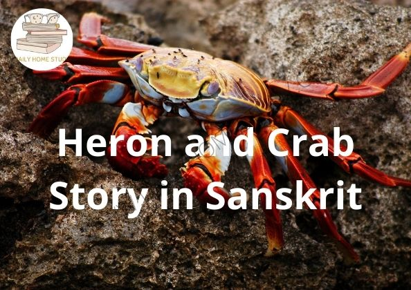 Heron and Crab Story in Sanskrit | DailyHomeStudy