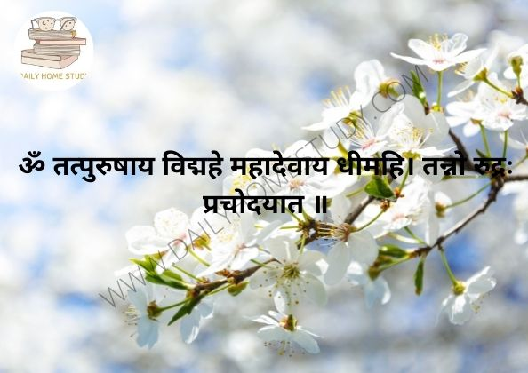 Om Tatpurushaye Mantra Meaning in English, Hindi | DailyHomeStudy